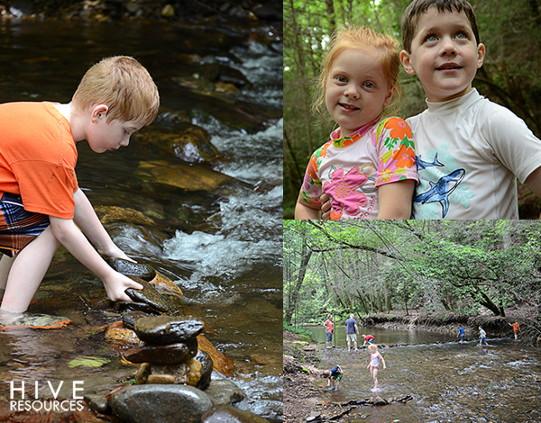 Creek fun {Hive Resources}