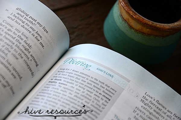 A new Bible study tool for women {Hive Resources}