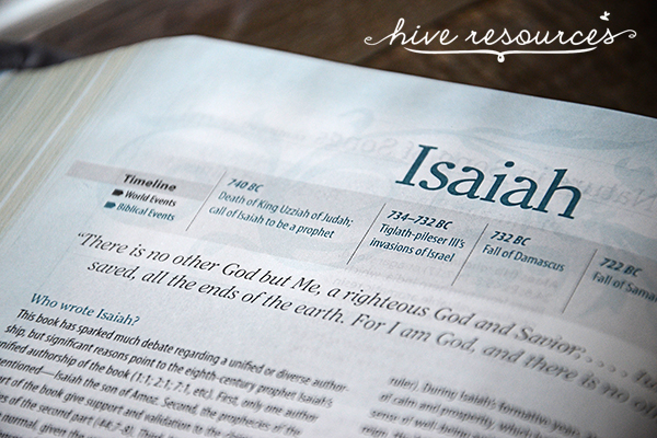 A tool to understand the timeline of the Bible {Hive Resources}