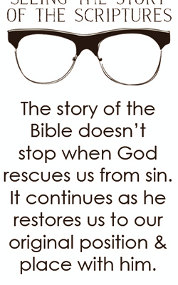 Plot Move 4 in God's Story (Don't miss the best part of the Bible)