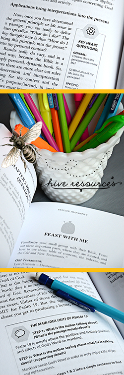 A peek inside the new study Sweeter than Honey {Hive Resources}