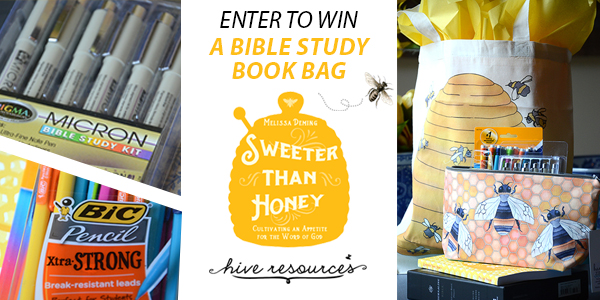 Enter to win a Sweeter than Honey study bag 2 {Hive Resources}